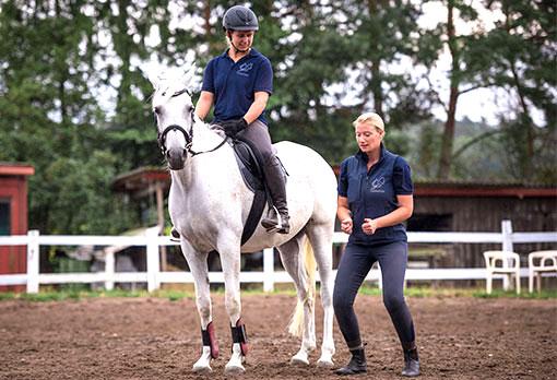 Pferd und Reiter im Reitunterricht während der XL-Woche im Landhotel Pferschulze