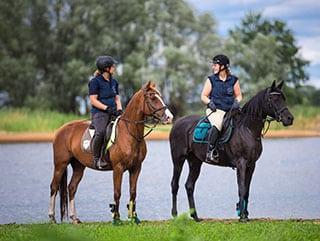 Zwei Reiterinnen stehen mit ihren Pferden im Elbtal an der Elbe