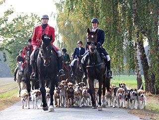 Jagdgruppe mit ihren Pferden und einer Schar Hunde während der Wietzetzer Jagdwoche