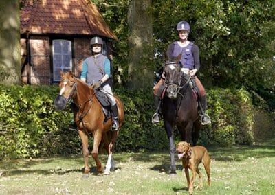 2 Reiter machen sich mit ihren Pferden und einem Hund auf zu einem Ausritt