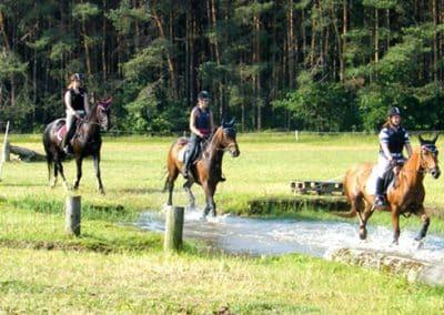 3 Reiter mit ihren Pferden reiten durch eine Furt auf dem Geländeplatz.