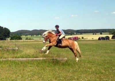 Galoppierendes Reiter-Pferd-Paar auf dem Geländeplatz