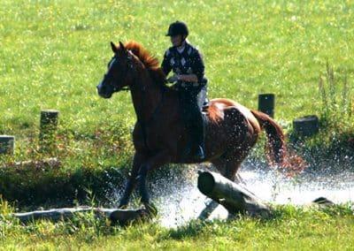Pferd mit Reiter galoppieren durch den Wassergraben auf dem Geländeplatz.