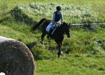 Pferd mit Reiterin reiten Abhang auf dem Geländeplatz runter.