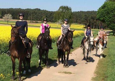 Fünf jugendliche Reiterinnen stehen mit ihren Pferden neben einem Rapsfeld, während eines Ausflugs mit dem Landhotel Pferdeschulze