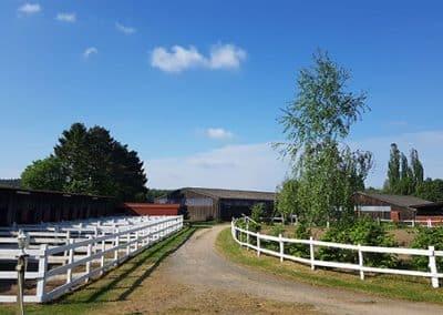 10 Paddockboxen am Weg zum Stall vom Landhotel Pferdeschulze