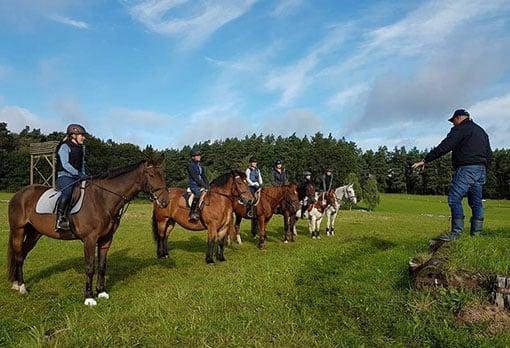 Gruppe von Reitern mit Pferden wird von Bernd Schulze unterrichtet.