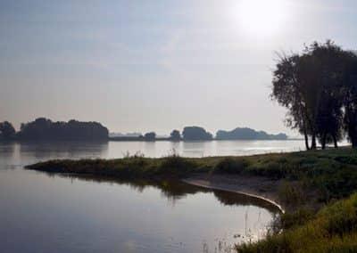 Morgenstimmung an der Elbe in der Lüneburger Heide