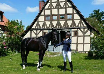 Reiterin mit Pferd vor einem Fachwerkhaus in der Lüneburger Heide