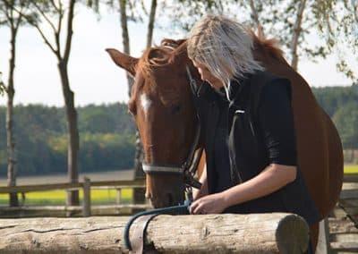 Junge Frau bereitet Pferd auf Ausritt vor